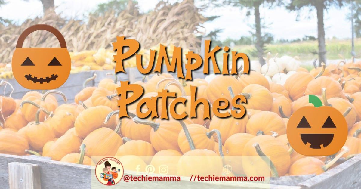 pumpkinpatches.header