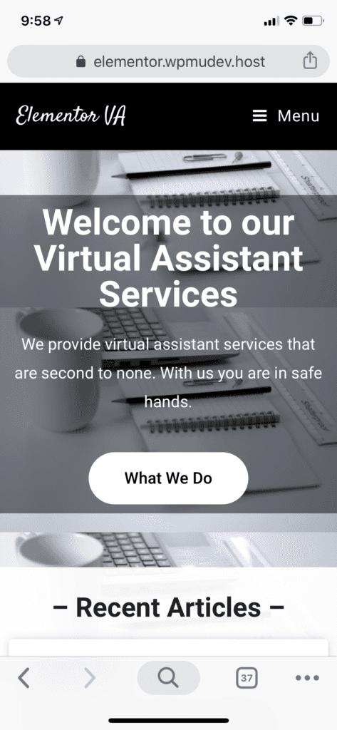 Elementor VA Website