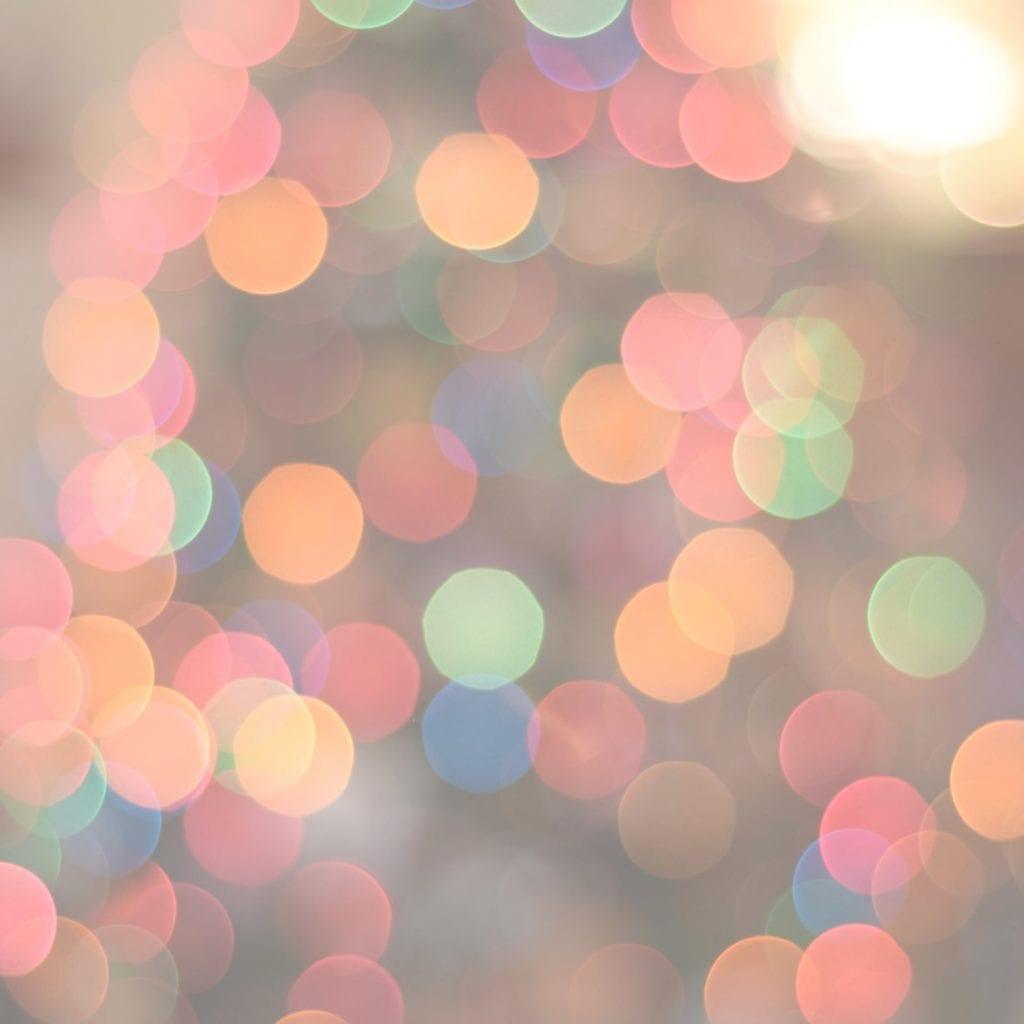 Celebrations + Holidays
